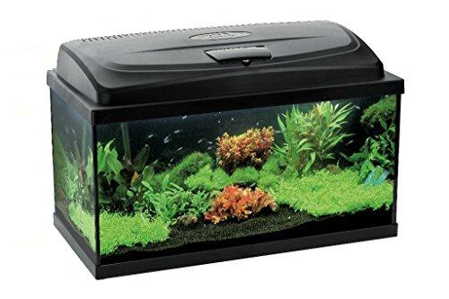 aquael aquarium set leddy led 100 200 liter komplett aquarium mit moderner led technik. Black Bedroom Furniture Sets. Home Design Ideas